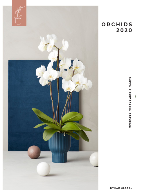 Orchids Catalogue 2020